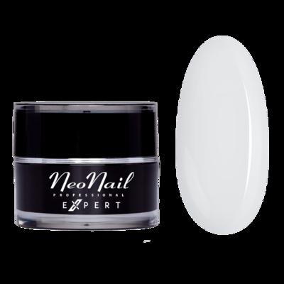 NEONAIL Expert - Paint gel 5 ml White Rose