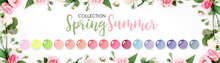 SUMMER / SPRING COLLECTION